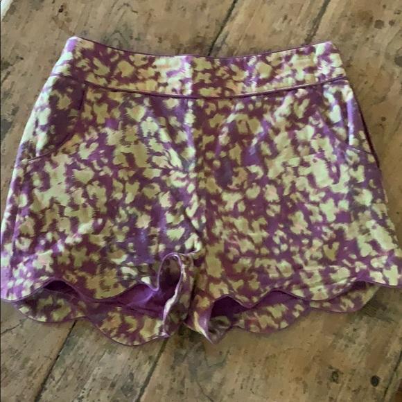 Darling Pants - Shorts
